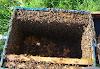 Πως παράγουμε τόνους μέλι από λίγα μελίσσια