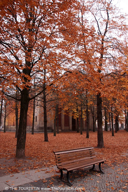 A wooden park bench on a Berlin city square in front of a city forest with colourful autumn foliage.
