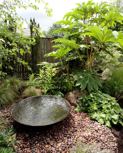 Small Water Feature Gardens Designs