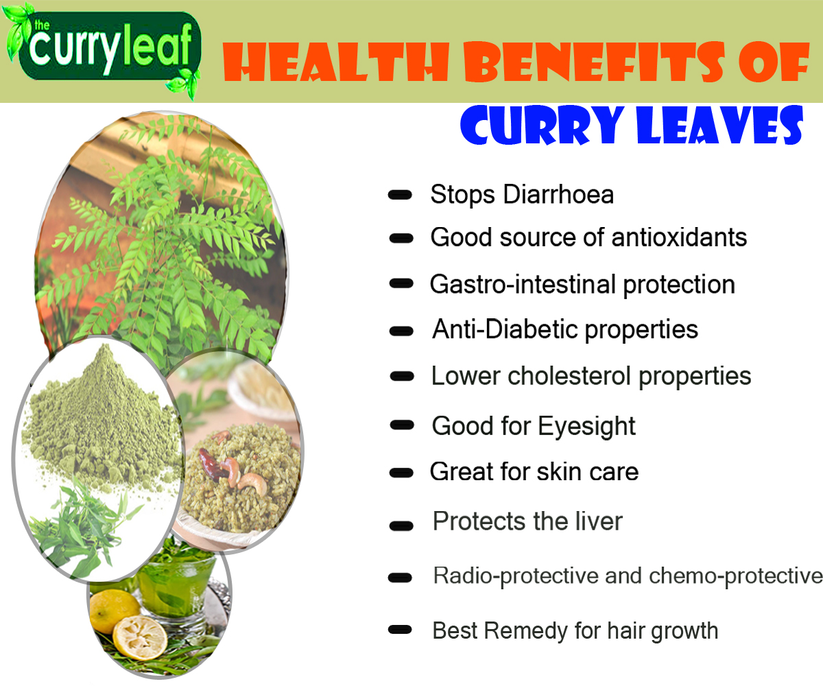 Health Benefits Of Curry Leaves Ewhat What To Know