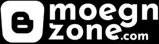 Blog Moegnzone.com | Zona Marketing Online