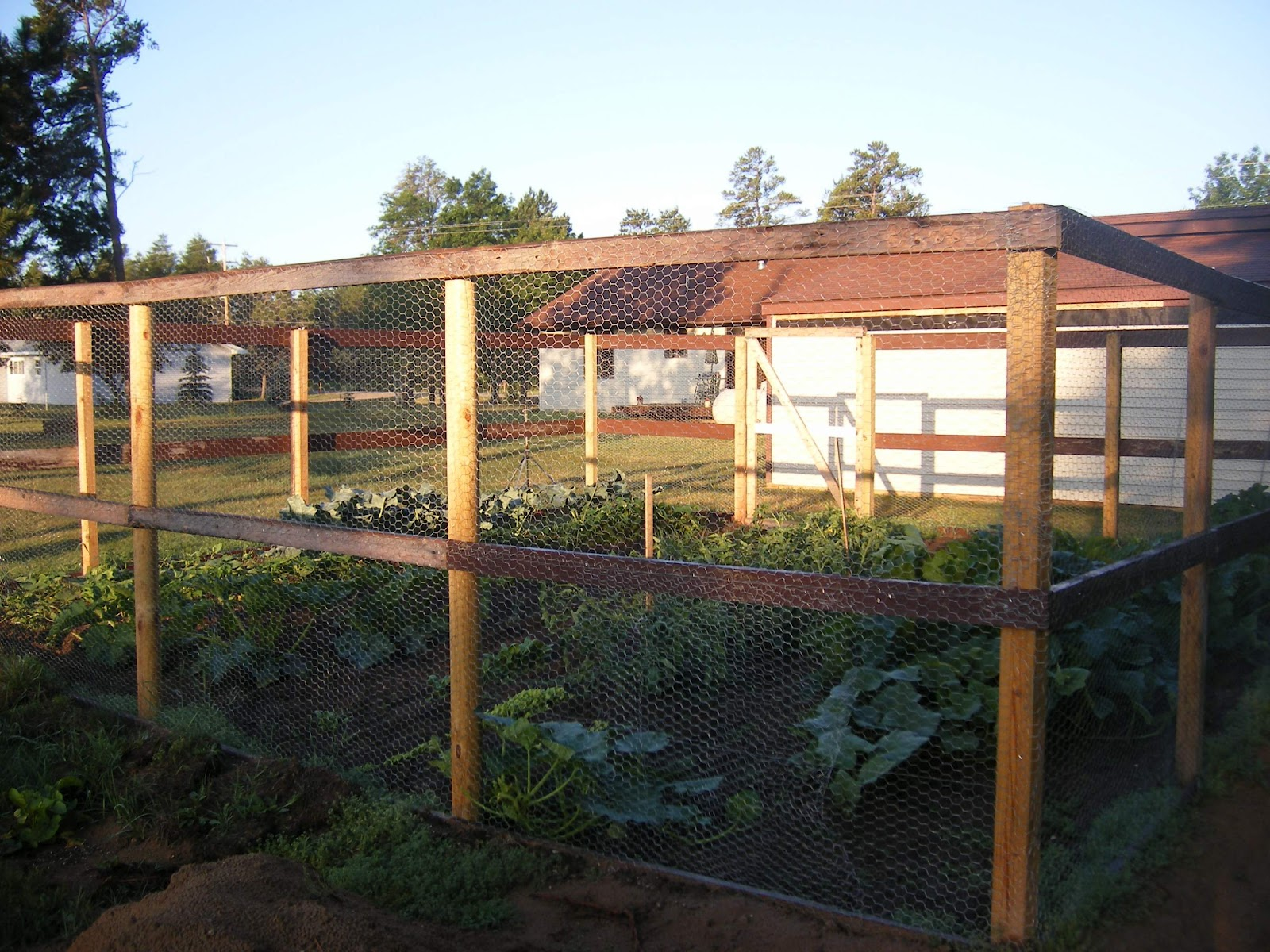 Two Men And A Little Farm: FENCE STYLES FOR THE GARDEN