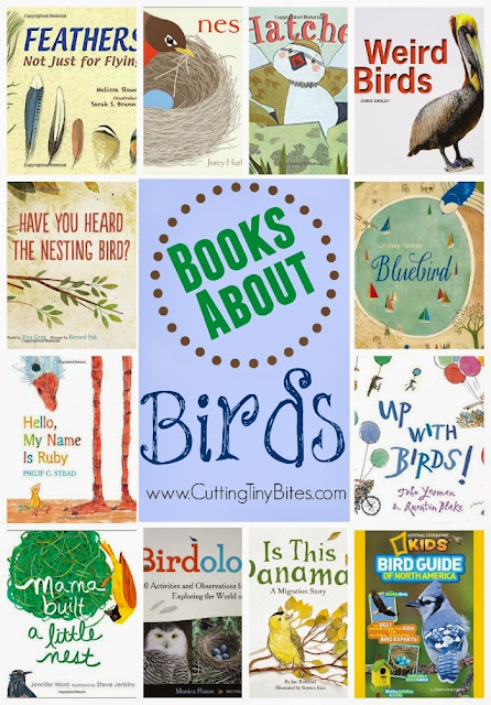 Book Review List for Bird Theme Homeschool Preschool Unit