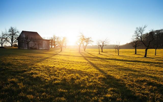 rumah, desa, halaman, tenang, cahaya
