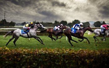Wallpaper: Horse Racing