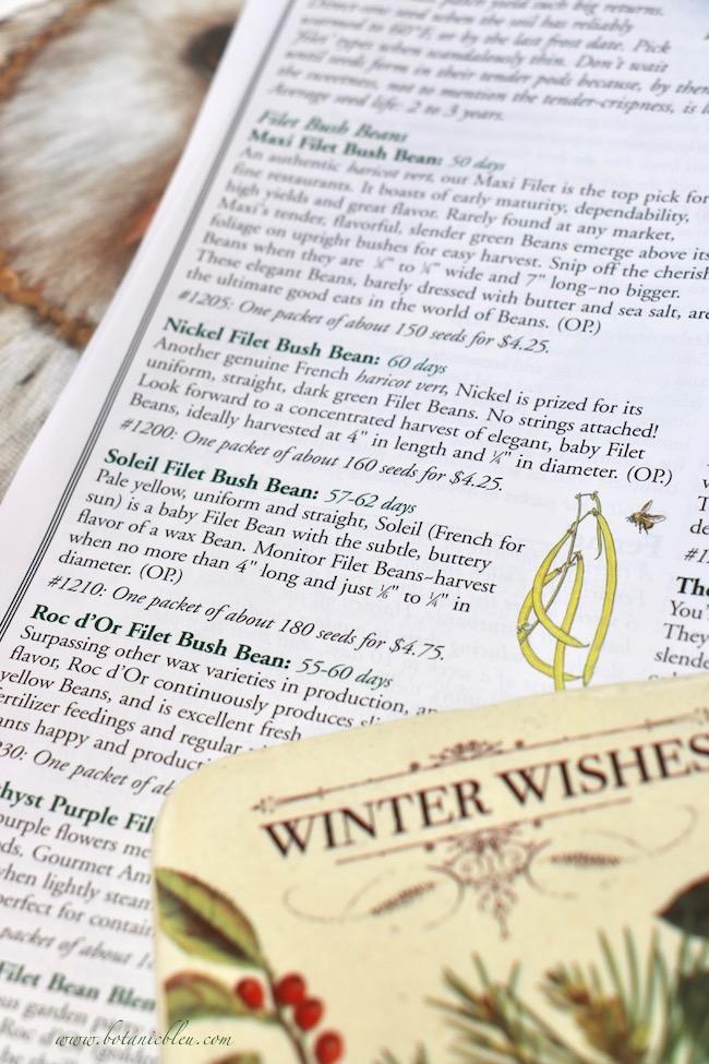Winter wishes for French garden Soleil Filet Bush Bean