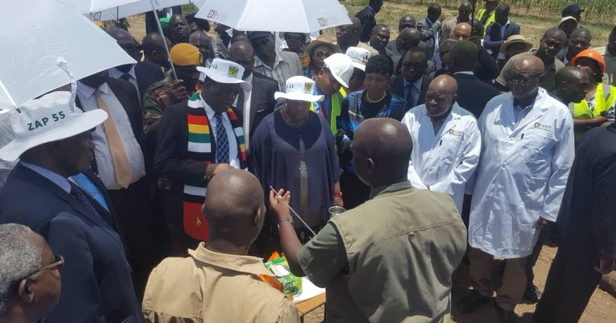 FUTURE FOR ZIM IS BRIGHT : ED