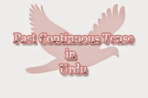 past continuous tense in urdu