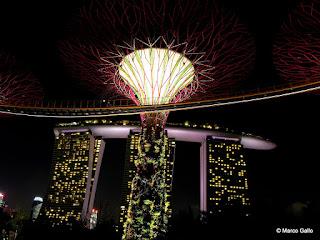 BOSQUE ARTIFICIAL. SINGAPUR