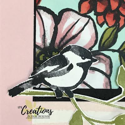 APM Creations | MtS 220