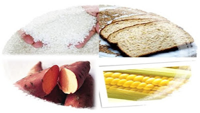 Akibat Terlalu Banyak Mengonsumsi Makanan yang Mengandung Karbohidrat, Lemak, dan Protein
