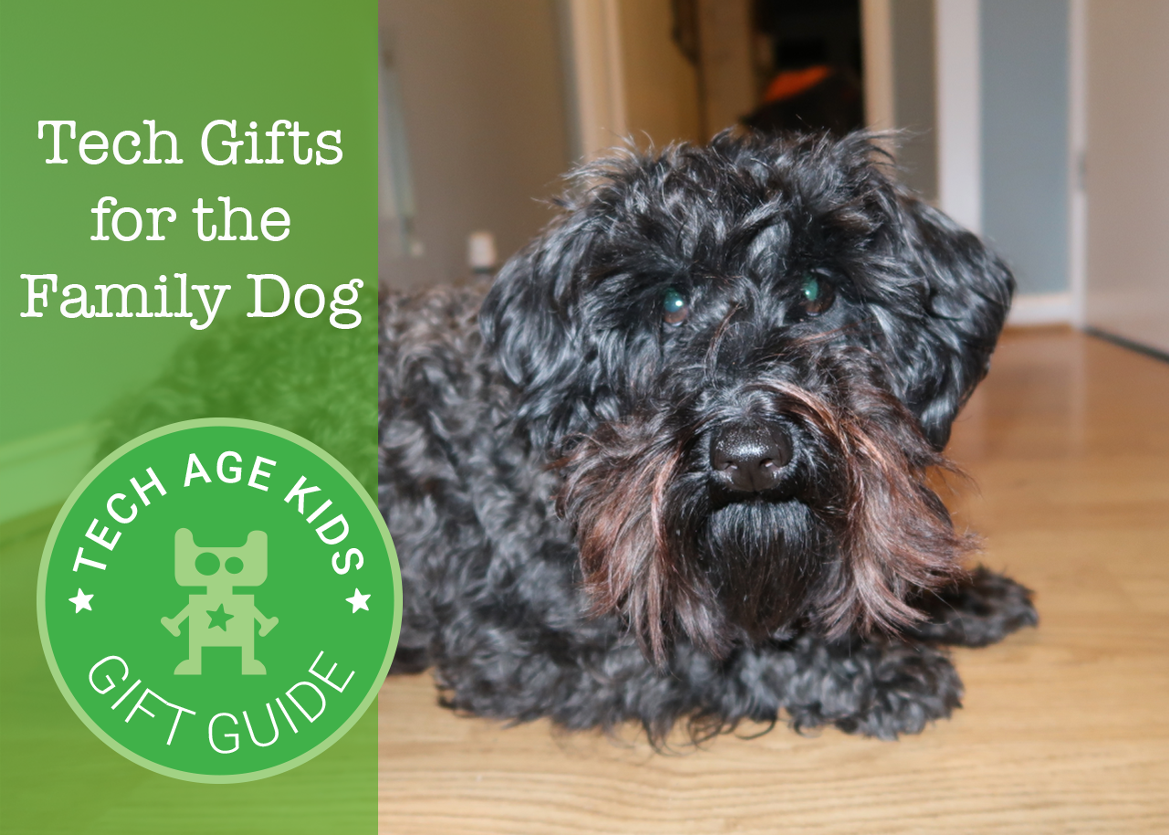 Tech Gifts For The Family Pet Dog