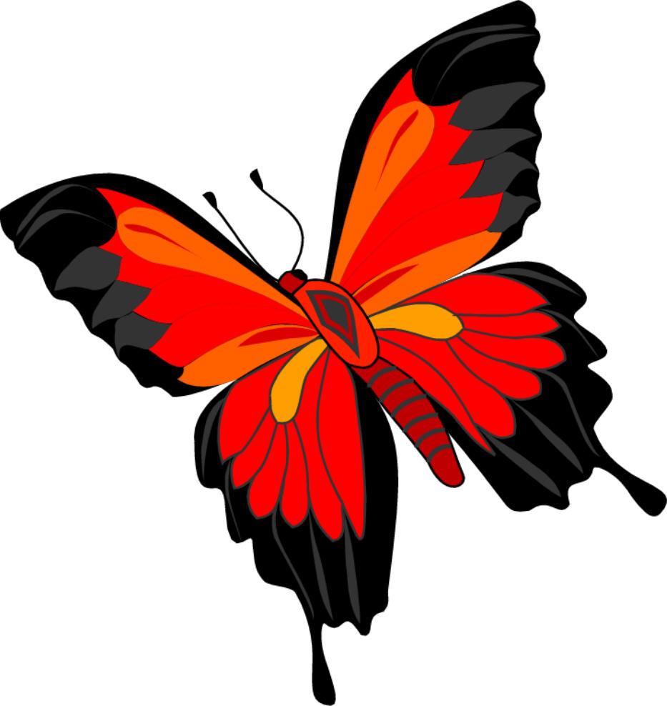 Foto Bilgim: Kelebek
