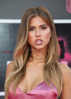 Kara Del Toro exposing her  body in transparent dress at Premiere of Unforgettable