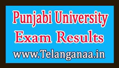 Punjabi University Exam Results
