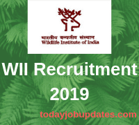 WII Recruitment 2019