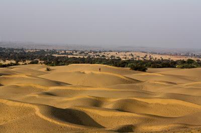 Arid Desert Of Thar, Bikaner