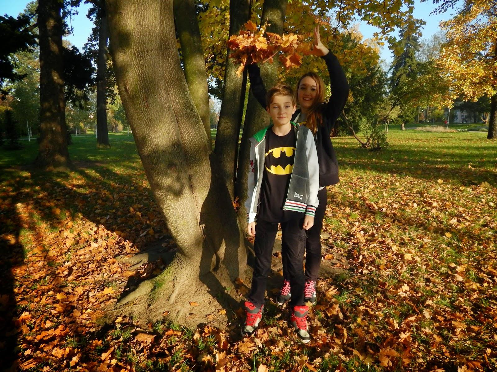 Podzimní padající listí v parku