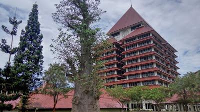 Trik Memilih Universitas Terbaik Di Indonesia