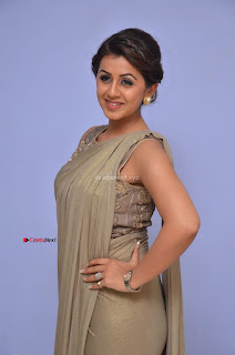 Nikki Galrani in Saree 088.JPG