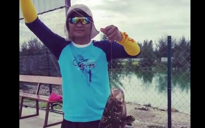 Kerapa Saiz Mega di Kolam Pancing Marina Island