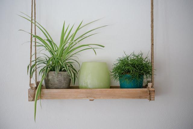 Urban Jungle, Grünes Wohnen, Pomponetti