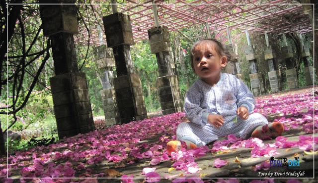 Pentingnya Mainan Bayi 7 Bulan Untuk Perkembangan Otak Si Kecil