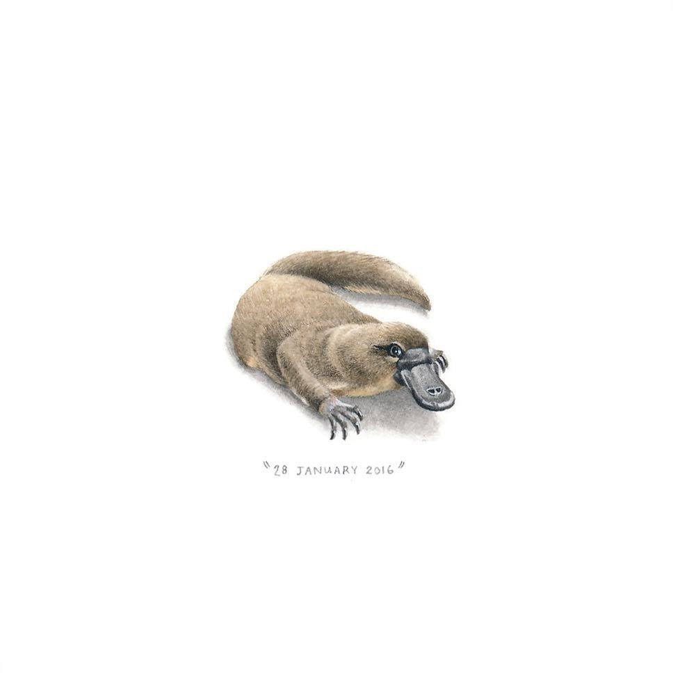 13-A-Platypus-Loots-Tiny-Miniature-Mixed-Media-Animals-and-Architecture-www-designstack-co