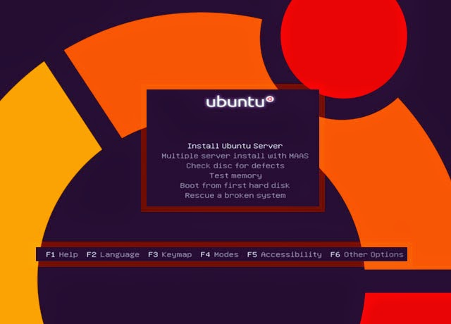 Fundamental Ubuntu Server Installation for The Proxy Server
