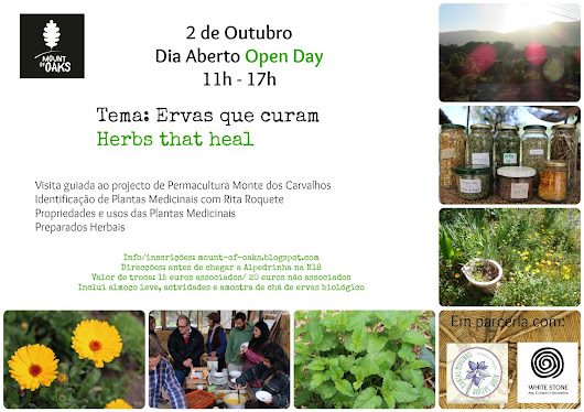 DIA ABERTO Ervas que curam / Herbs that Heal OPEN DAY 2nd October