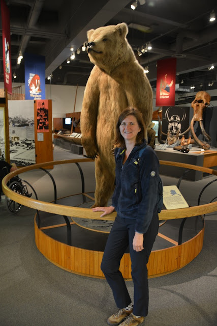 Museum of the North Fairbanks bear
