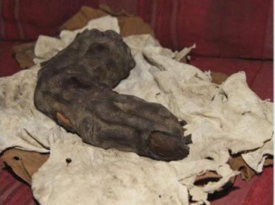العثور على إصبع عملاق في مصر