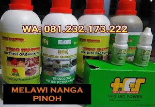 Jual SOC HCS, KINGMASTER, BIOPOWER Siap Kirim Melawi Nanga Pinoh