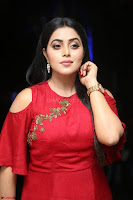Poorna in Maroon Dress at Rakshasi movie Press meet Cute Pics ~  Exclusive 58.JPG