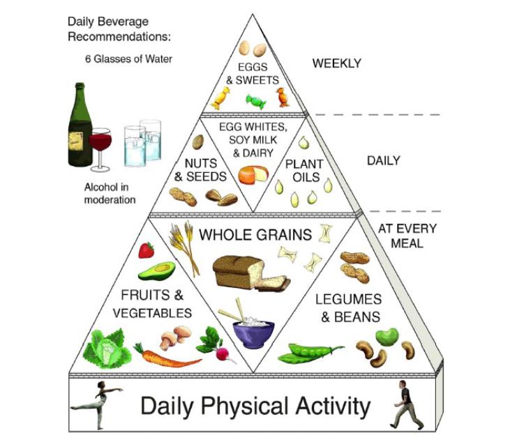Lacto-ovo vegetarian pyramid food