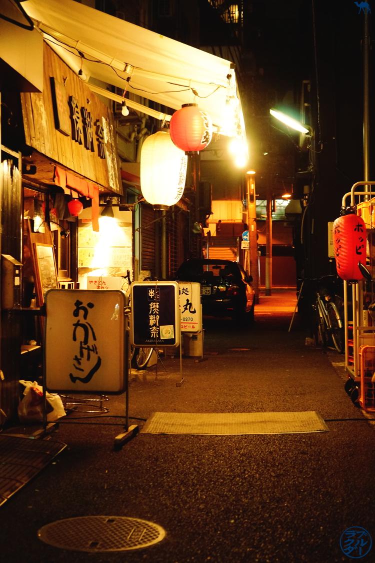 Le Chameau Bleu - Voyage au Japon - Tokyo - Mocona Isakaya à Akihabara