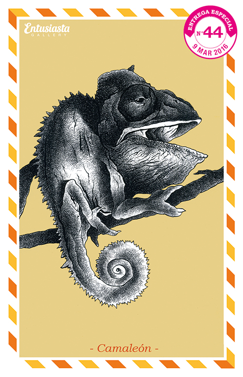 An illustrated postcard with an ink fine art caricature of chameleon on a branch.