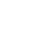 BWS CONSULTORIA