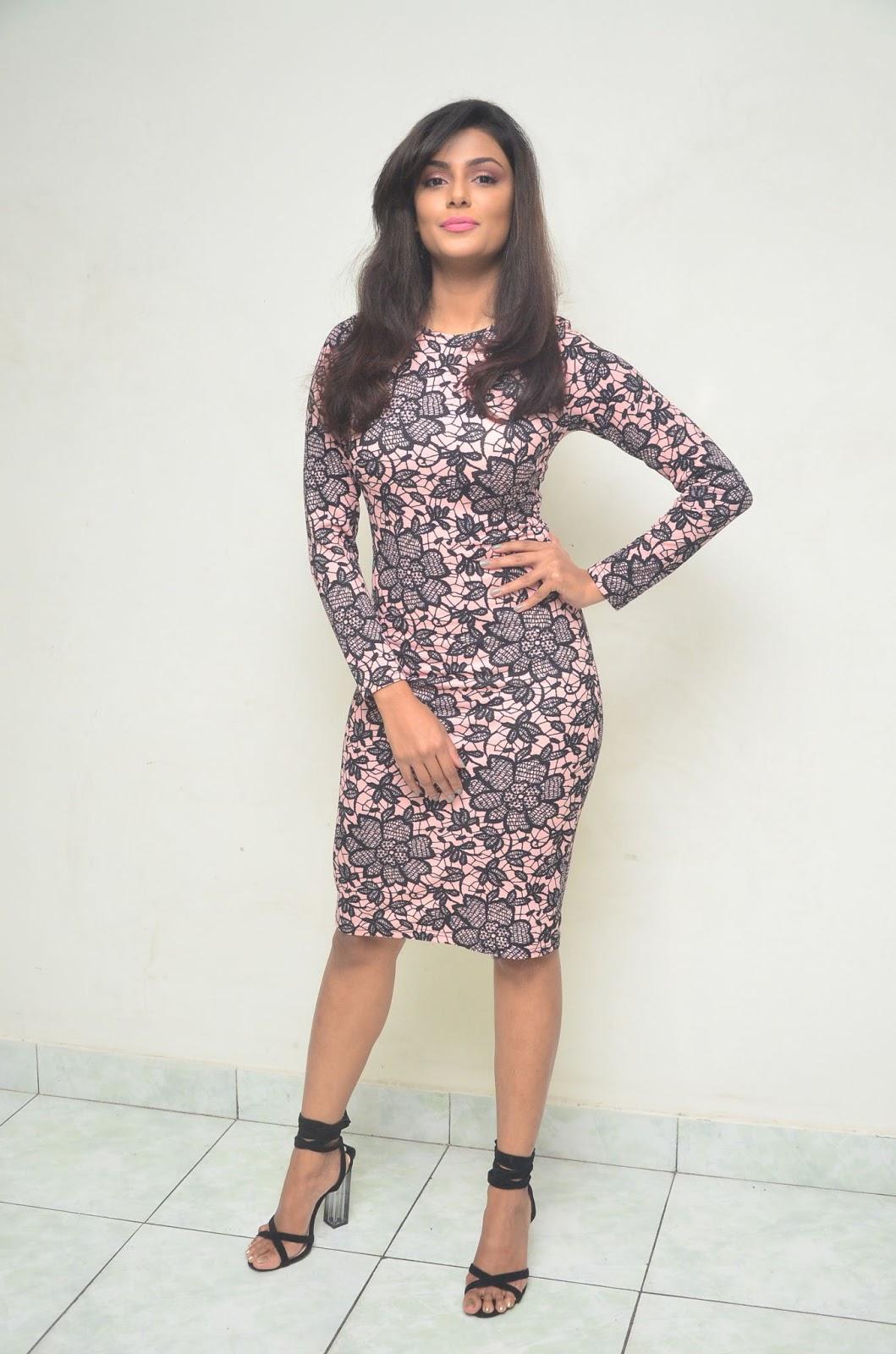 Anisha Ambrose at Fashion Designer So Ladies Tailor Press Meet