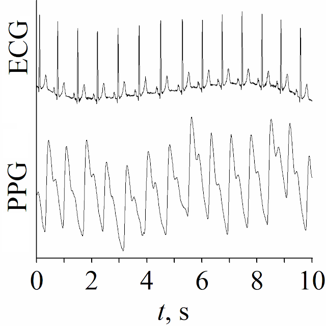 Statistical properties of the phase synchronization index of