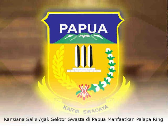 Kansiana Salle Ajak Sektor Swasta di Papua Manfaatkan Palapa Ring