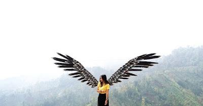 Spot Selfi Sayap Burung di Coban Bidadari Poncokusomo Malang Jawatimur