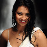 Isha chawla hot spicy exposing wet saree pics