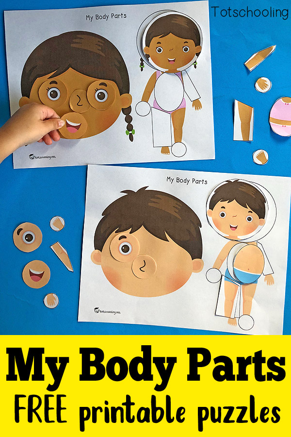 FREE printable activity for toddlers and preschoolers to identify body parts and place pieces where they go. Great anatomy activity that also helps to build vocabulary.