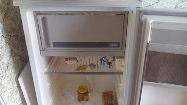 холодильник минск примерз