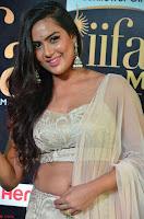 Prajna Actress in bhackless Cream Choli and transparent saree at IIFA Utsavam Awards 2017 005.JPG