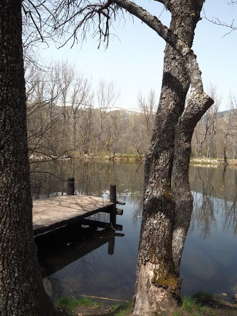 Embarcadero junto a un lago