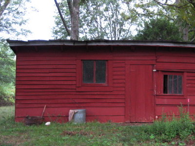 This is the original shed with its original door. The shed became our first chicken coop (on the left) and goat shed (on the right). & 5 Acres \u0026 A Dream: Little Barn: Doors and Walls