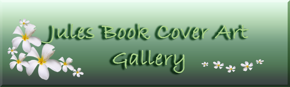 Julie Napier Book Cover Art Gallery