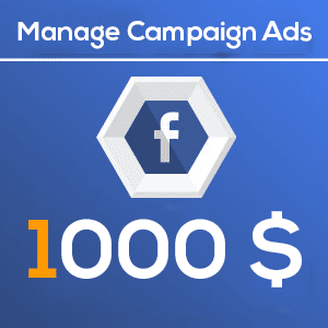 1000 Manage Facebook Campaign Ads